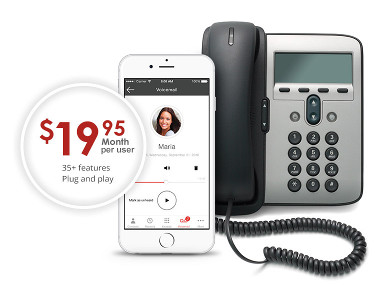 Get a New Business Phone Number